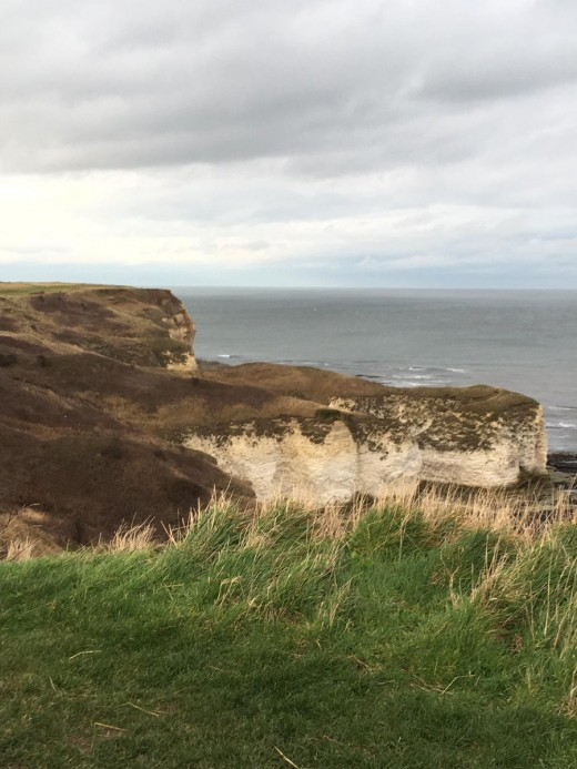A photograph of the cliffs at Flamborough Head shortly after we arrived.
