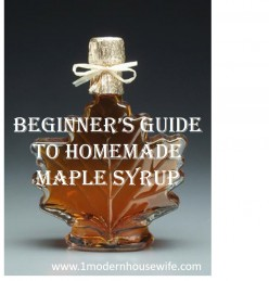 Beginner's Guide to Homemade Maple Syrup