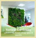 How to Use an Indoor Vertical Garden in Your Home