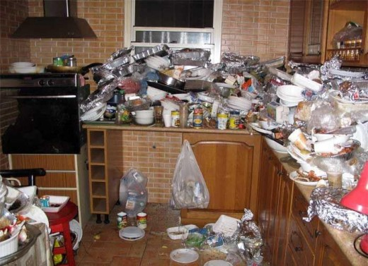 """Some """"adults"""" can't bother to clean up regularly if at all."""