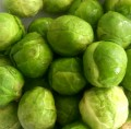 Grow Brussels Sprouts