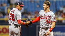 Nats Braced For Success Without Bryce