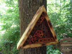 What Is a Bee Hotel?