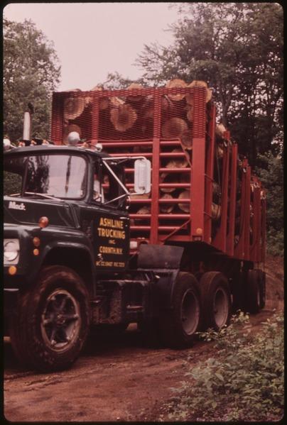Log truck on Litchfield   Paper Company Log Yard.