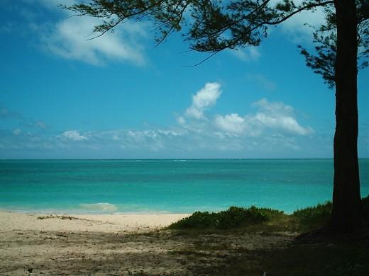 A Breezy Hawaiian Beach
