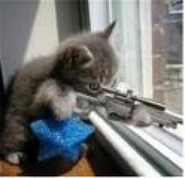 Sniper in training.