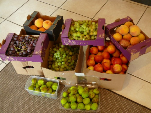 Some of the fruit we brought back