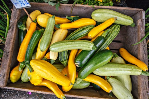 Squash make for a delicious substitute to meat. Grilled over coals and added with a dash of salt make for a great spring time cook out snack. Squash is also fun to grow and its beautiful flowers can be tempura style fried and eaten.