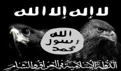 Terrorist Attacks: Reasons Why!
