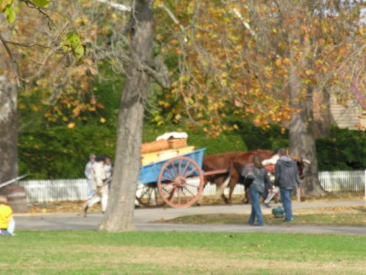 A horse drawn cart, Colonial Williamsburg, November 2014.