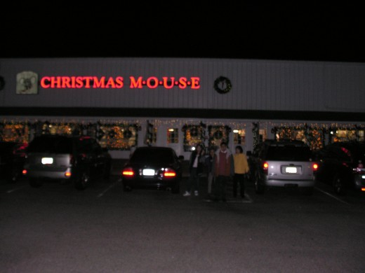 The Christmas Mouse by night, November 2014.