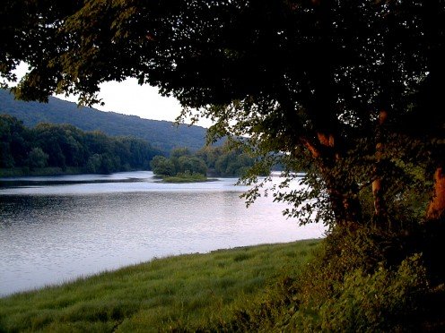 Worthington State Park taken from a campsite on the Delaware River