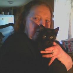 My Cat, My Companion, My Best Friend