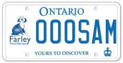 Ford Nation:  Forget Education - Let's Change License Plates!