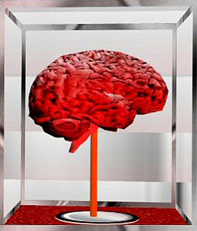 The human brain, still not fully understood.