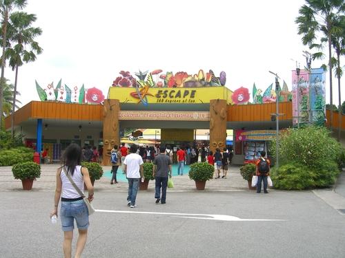 Escape Theme Park, Singapore