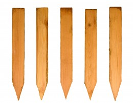 Wooden stakes should be made from whitethorn or hawthorn