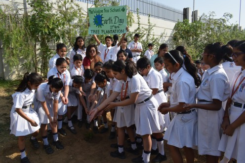 Students of The Wisdom Tree School sowed seeds in the school herbal garden on the occassion of World Earth Day.