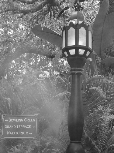 "Pathway to ""Hollywood Tower Hotel"""
