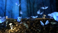 Blue Butterflies: Flash Fiction - A Humble Offering to Chris Mills!