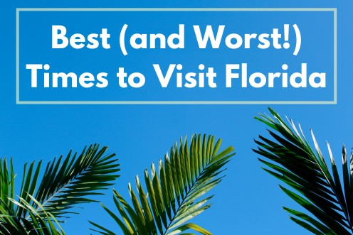 Best Time to Visit Florida for Warm Weather and Low Rain