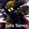 Julio Torres69 profile image