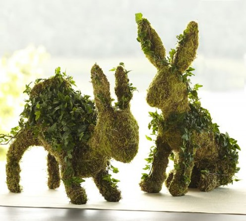 The vines eventually will cover the stuffed moss and soil shaped form.
