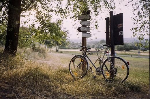 Bicycle and Vintage Road Signs