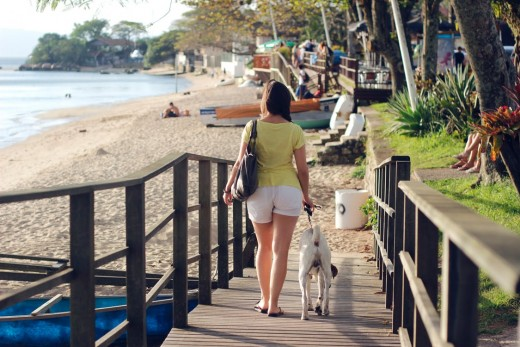 Woman and her dog at beach resort