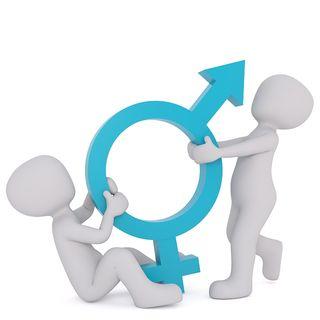 the gender segregation