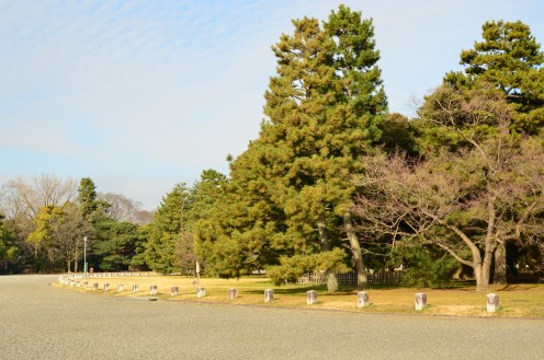 Imperial Gardens at Kyoto