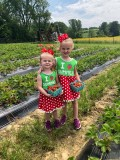 Summer Strawberry Patch Fun