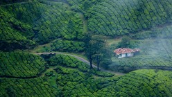 Best Ways to Relax in Kerala
