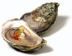 The Good and Bad Health Effects of Eating Oysters