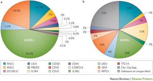 Pic: Proportions of SCID genotypes diagnosed with or without newborn screening.