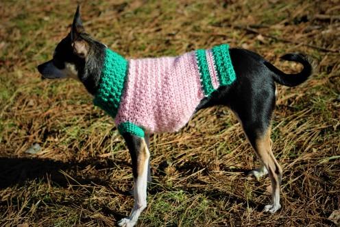 Vintage Rose Dog Sweater Crochet Pattern