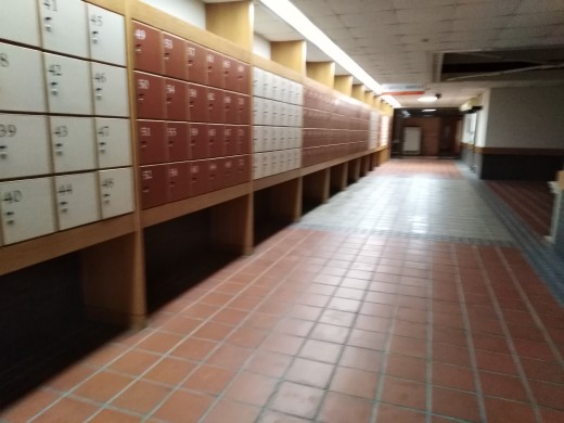 I sneaked in to the Library's basement with my backpack in tow. There it was (female protagonist) Shancai's famous locker #150.