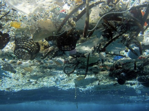 The Great Pacific Garbage Patch is a stretch of trash in the Pacific Ocean that is about 3 times the size of France.