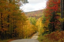 Off the Beaten Path In Vermont