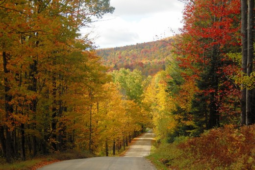 A Vermont country road in the Fall.