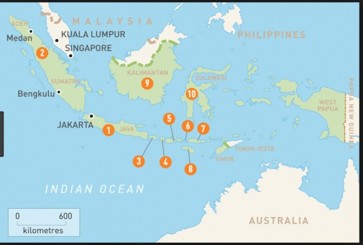 A map of Sumatra where many orangutans  once made their homes.