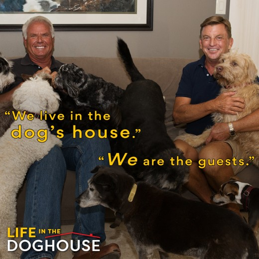 Visit Danny & Ron's Rescue Website and find out more information on how to help save abandoned dogs and adopt