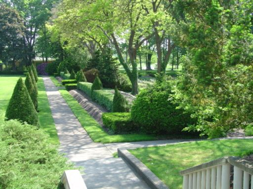View looking toward the rose gardens