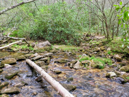 A creek bed that could be crossed