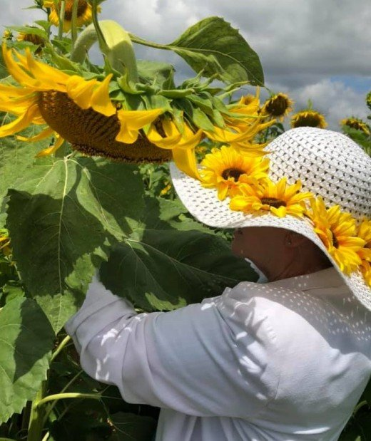 My Sunflower hat.