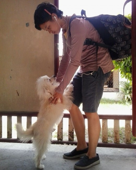 Kujo happily welcomes his owner home after hours of waiting