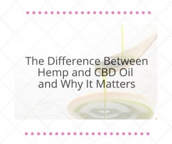 The Difference Between Hemp and CBD Oil and Why It Matters