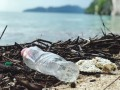 How Is Plastic Affecting Our Environment?