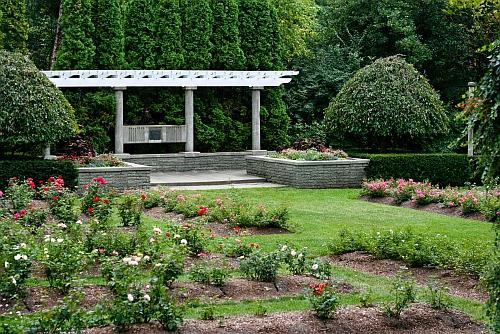 Rose Gardens, Frances Park