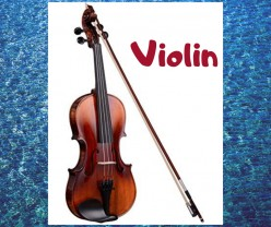 What Orchestral Instrument Will You Learn ? The String Section